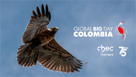 Informe Global Big Day 2019 CHEC Grupo EPM